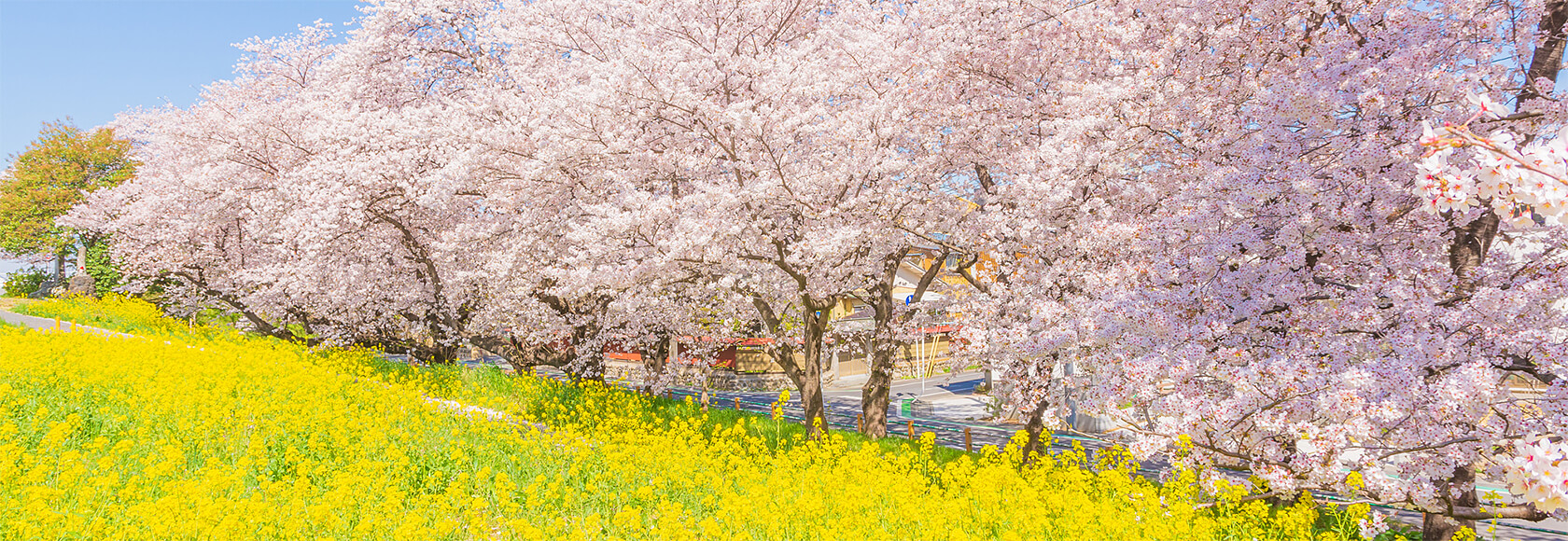 熊谷市自治会連合会